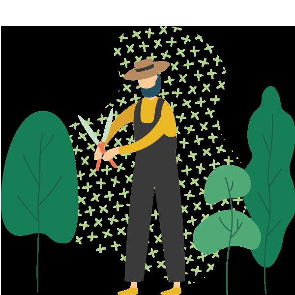 http://edringtongreenscapes.com/wp-content/uploads/2019/11/illustration_03.png