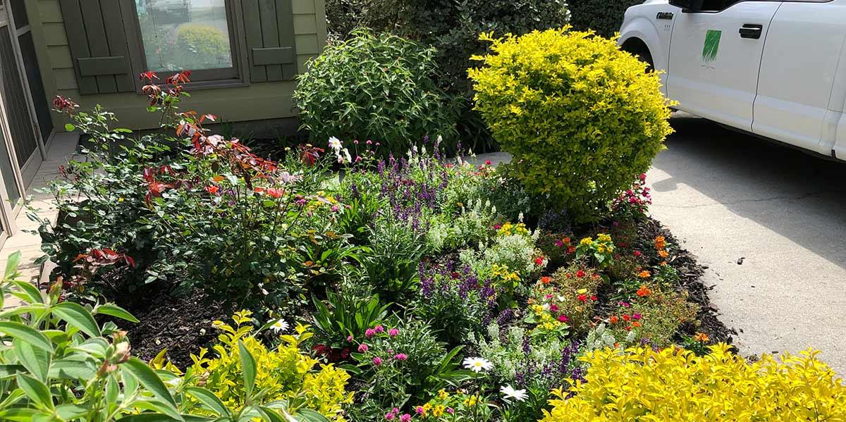 https://edringtongreenscapes.com/wp-content/uploads/2020/05/flowers3.jpg